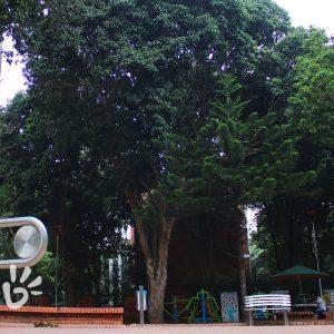 parque-conucos7