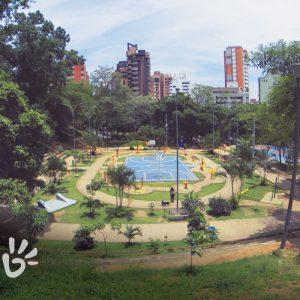 parque-leones-6