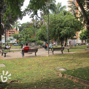 parque-palmas5