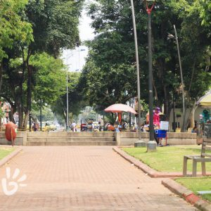 parque-san-francisco4