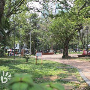 parque-san-pio5