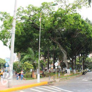 parque-turbay2